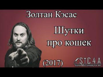 Золтан Кэсас - Шутки про кошек (2017)